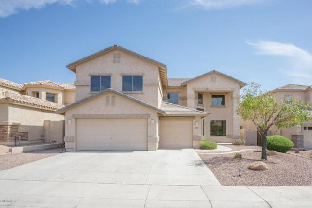 13429 W Jacobson Drive, Litchfield Park, AZ 85340 (MLS #5799929) :: Gilbert Arizona Realty