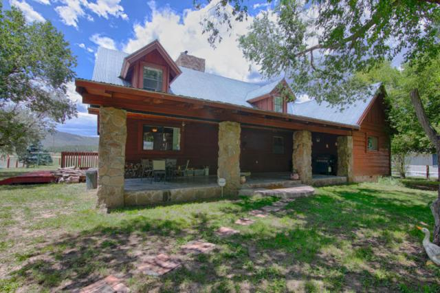 13 County Road #2016, Nutrioso, AZ 85932 (MLS #5799972) :: The Garcia Group @ My Home Group