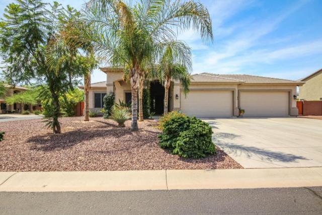 14751 W Cortez Street, Surprise, AZ 85379 (MLS #5799997) :: Occasio Realty