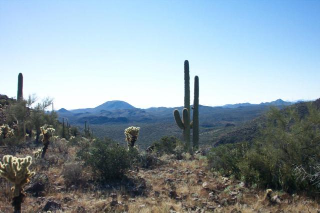 0 N Lake Pleasant Road, Morristown, AZ 85342 (MLS #5800018) :: The Wehner Group