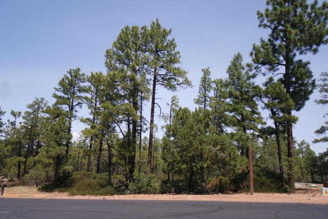 860 Falling Leaf Road, Show Low, AZ 85901 (MLS #5800068) :: RE/MAX Excalibur
