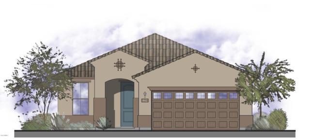 11453 W Westgate Drive, Surprise, AZ 85378 (MLS #5800135) :: Keller Williams Realty Phoenix
