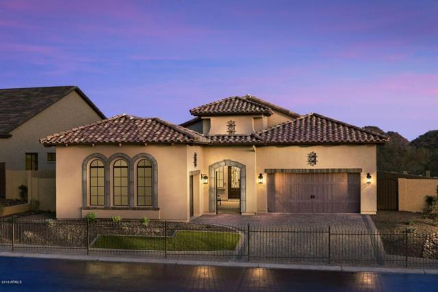 1128 N Quinn, Mesa, AZ 85205 (MLS #5800155) :: Scott Gaertner Group