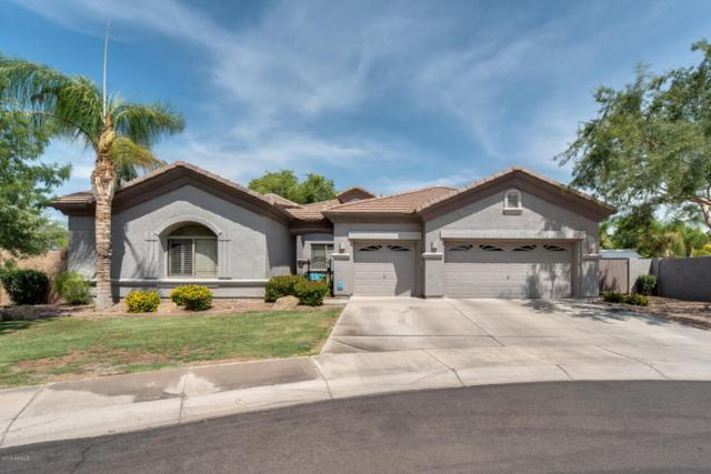 6525 S Bell Court, Chandler, AZ 85249 (MLS #5800180) :: Sibbach Team - Realty One Group