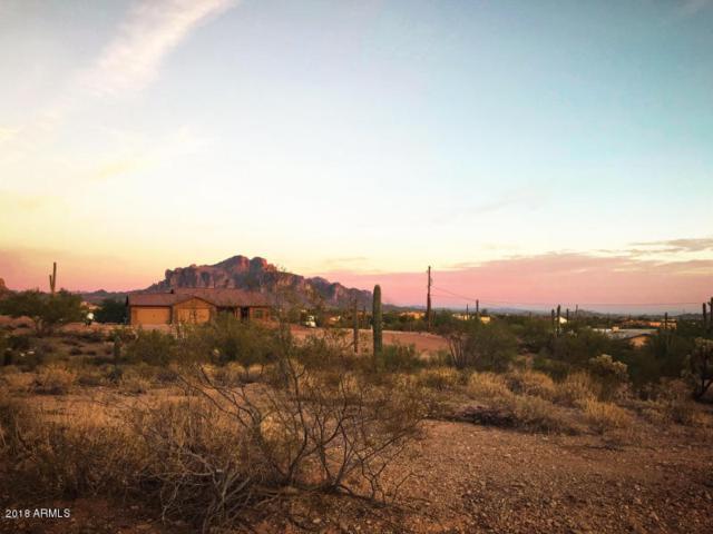5025 N Idaho Road, Apache Junction, AZ 85119 (MLS #5800211) :: The Kenny Klaus Team