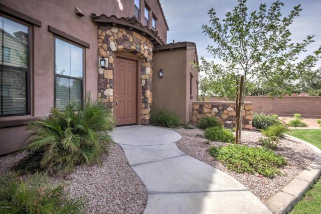 4777 S Fulton Ranch Boulevard #1055, Chandler, AZ 85248 (MLS #5800307) :: The Daniel Montez Real Estate Group