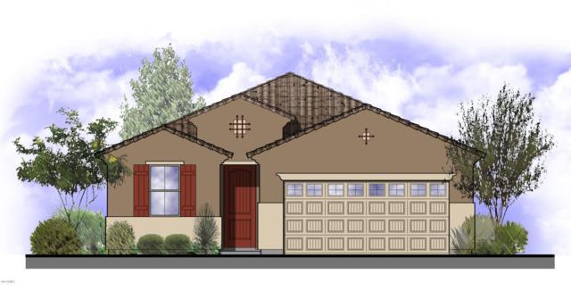 11458 W Foxfire Drive, Surprise, AZ 85378 (MLS #5800355) :: Keller Williams Realty Phoenix