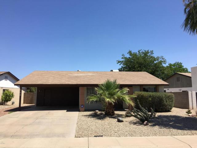 224 E Auburn Drive, Tempe, AZ 85283 (MLS #5800400) :: Sibbach Team - Realty One Group