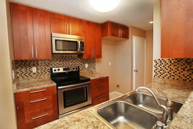 2035 S Elm Street #131, Tempe, AZ 85282 (MLS #5800676) :: Team Wilson Real Estate