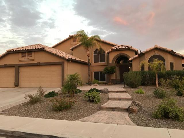14648 S 24TH Street, Phoenix, AZ 85048 (MLS #5800686) :: My Home Group