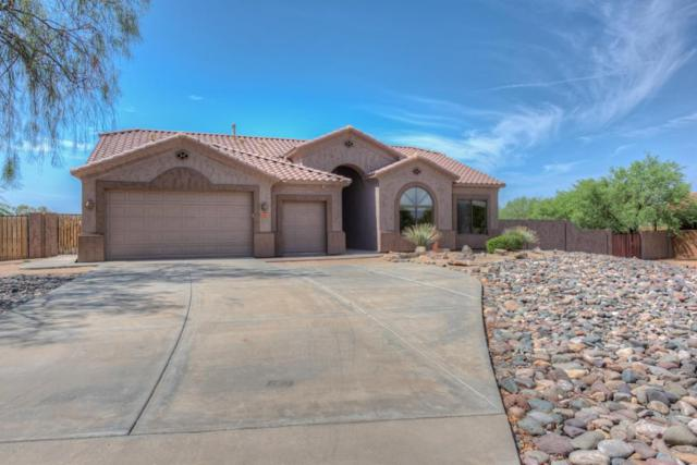 105 E Tanya Road, Phoenix, AZ 85086 (MLS #5800805) :: The W Group