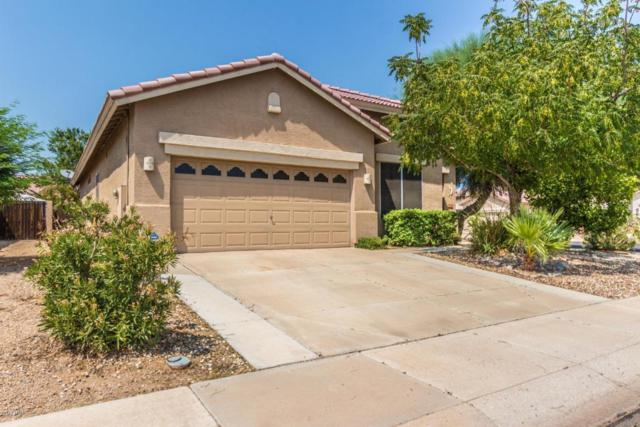 11658 W Eagle Court, Surprise, AZ 85378 (MLS #5800891) :: CC & Co. Real Estate Team