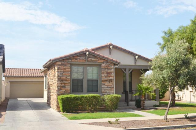 15157 W Aster Drive, Surprise, AZ 85379 (MLS #5800935) :: Phoenix Property Group