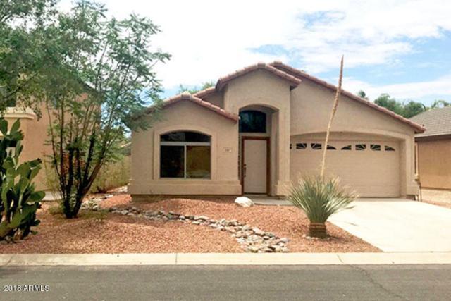 1087 E Taylor Trail, San Tan Valley, AZ 85143 (MLS #5800941) :: Yost Realty Group at RE/MAX Casa Grande
