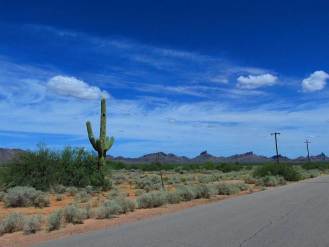 0 S Big Sky Avenue, Eloy, AZ 85131 (MLS #5801058) :: Devor Real Estate Associates