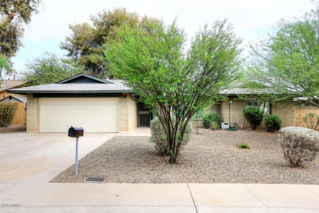 614 E Lodge Drive, Tempe, AZ 85283 (MLS #5801292) :: Yost Realty Group at RE/MAX Casa Grande