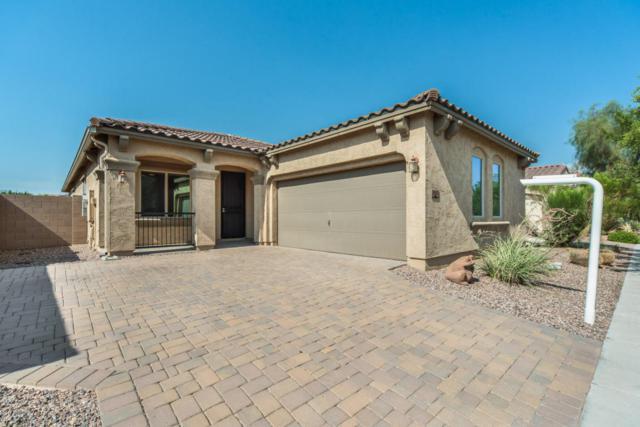 3122 E Harrison Street, Gilbert, AZ 85295 (MLS #5801503) :: Lux Home Group at  Keller Williams Realty Phoenix