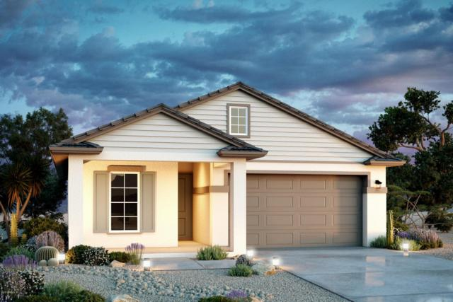 12617 W Nogales Drive, Sun City West, AZ 85375 (MLS #5801580) :: Gilbert Arizona Realty