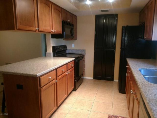 3031 N Civic Center Plaza #213, Scottsdale, AZ 85251 (MLS #5801607) :: Phoenix Property Group