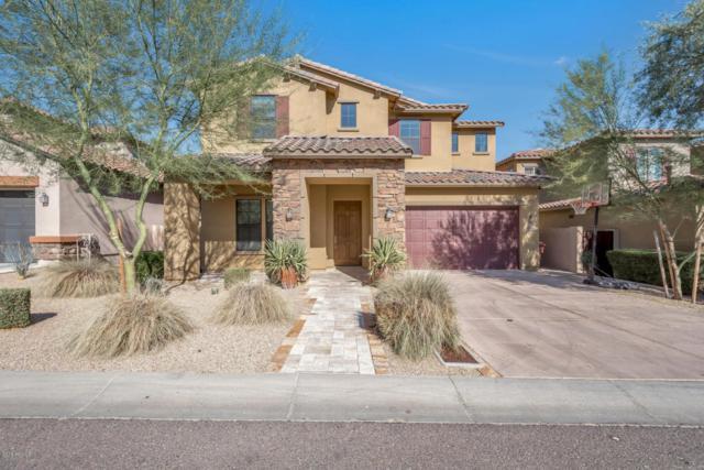 10001 E South Bend Drive, Scottsdale, AZ 85255 (MLS #5801681) :: Occasio Realty