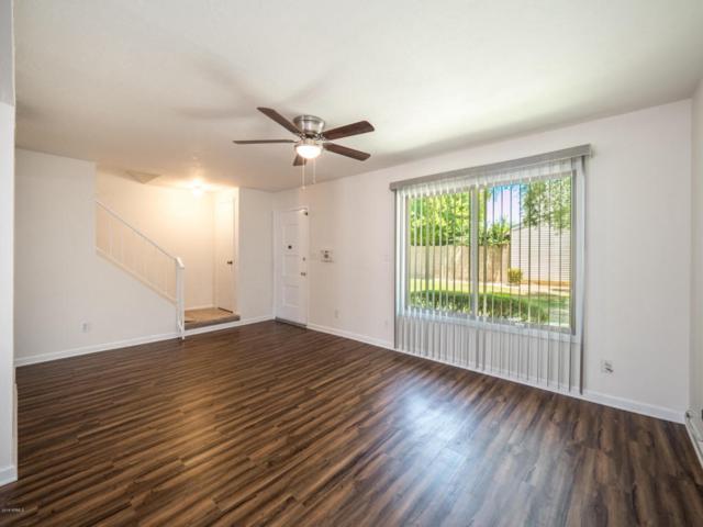 6555 S Granada Drive, Tempe, AZ 85283 (MLS #5801694) :: Yost Realty Group at RE/MAX Casa Grande