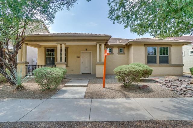 3281 E Ivanhoe Street, Gilbert, AZ 85295 (MLS #5801700) :: The Everest Team at My Home Group