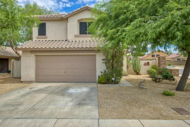 5180 W Campo Bello Drive, Glendale, AZ 85308 (MLS #5801764) :: Sibbach Team - Realty One Group