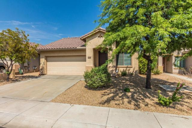 39525 N Harbour Town Way, Anthem, AZ 85086 (MLS #5801772) :: The Jesse Herfel Real Estate Group