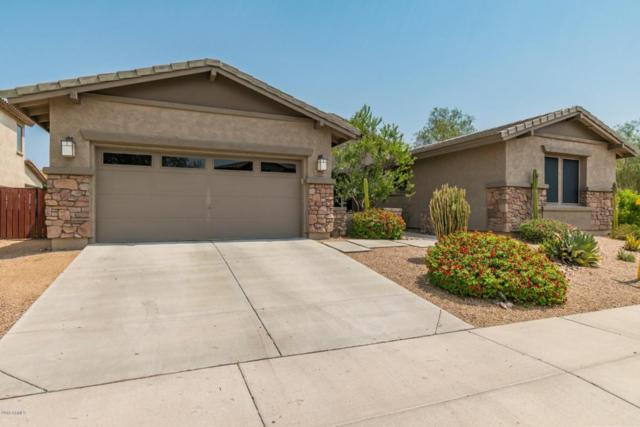 1728 W Aloe Vera Drive, Phoenix, AZ 85085 (MLS #5801818) :: Santizo Realty Group