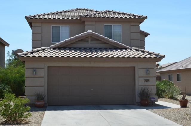 31298 N Blackfoot Drive, San Tan Valley, AZ 85143 (MLS #5802005) :: Occasio Realty
