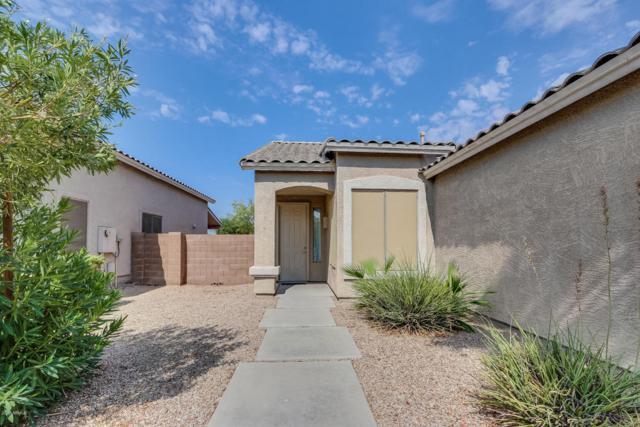 3206 N 127TH Lane, Avondale, AZ 85392 (MLS #5802123) :: The Jesse Herfel Real Estate Group