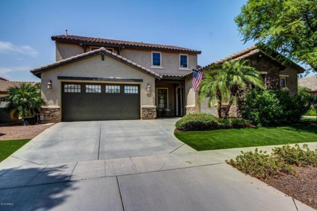 15244 W Alexandria Way, Surprise, AZ 85379 (MLS #5802131) :: Kortright Group - West USA Realty