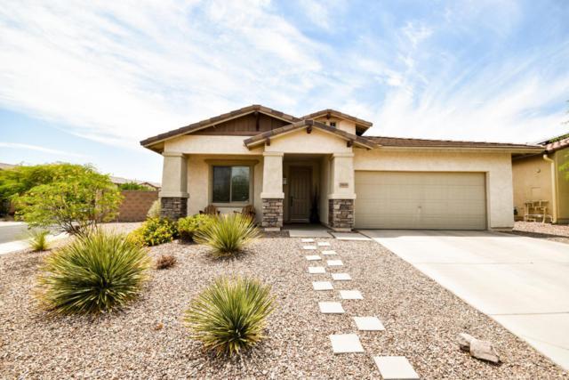 29606 N 126TH Avenue, Peoria, AZ 85383 (MLS #5802235) :: Occasio Realty
