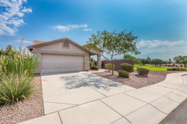 12602 W Columbus Avenue, Avondale, AZ 85392 (MLS #5802344) :: The Jesse Herfel Real Estate Group