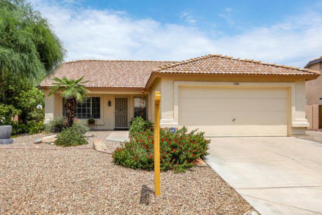 1396 W 15TH Lane, Apache Junction, AZ 85120 (MLS #5802392) :: Yost Realty Group at RE/MAX Casa Grande