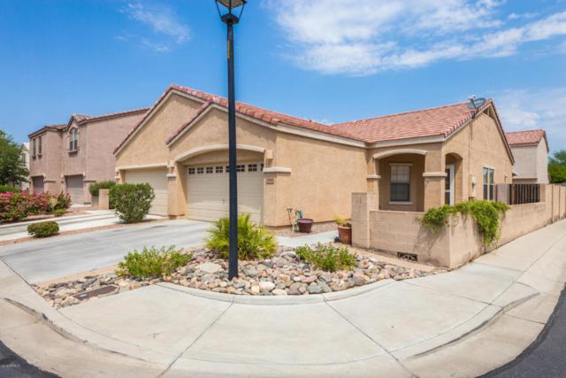 7008 W Cesar Street, Peoria, AZ 85345 (MLS #5802497) :: The Daniel Montez Real Estate Group