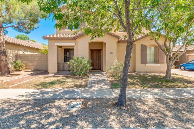 4509 E Harrison Street, Gilbert, AZ 85295 (MLS #5802555) :: Realty Executives