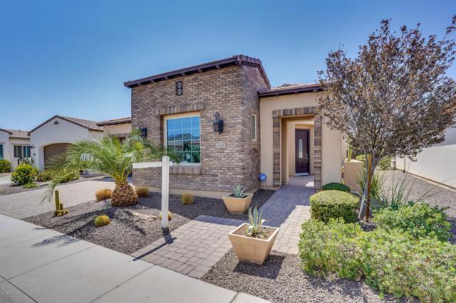 1549 E Verde Boulevard, San Tan Valley, AZ 85140 (MLS #5802637) :: Yost Realty Group at RE/MAX Casa Grande