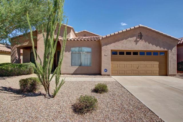 18475 W Sunrise Drive, Goodyear, AZ 85338 (MLS #5802697) :: Occasio Realty