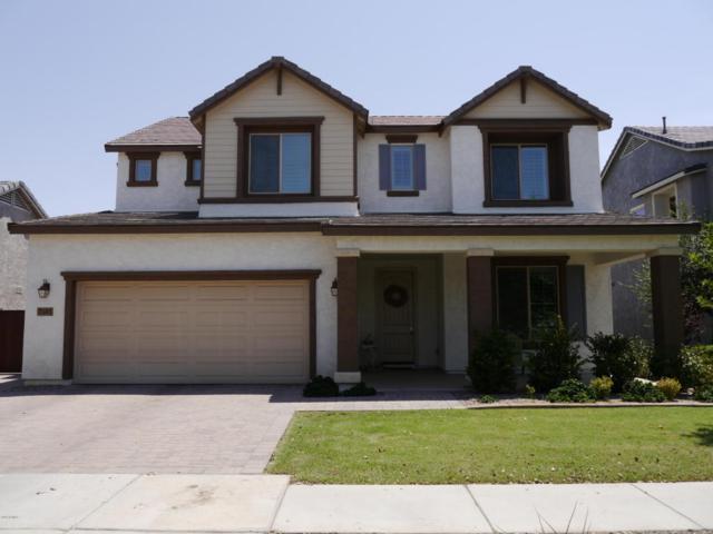 7345 E Plata Avenue, Mesa, AZ 85212 (MLS #5802716) :: The Bill and Cindy Flowers Team