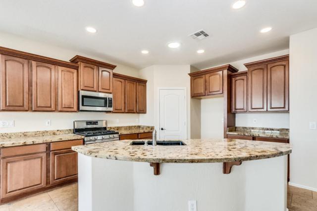 2505 N 119TH Drive, Avondale, AZ 85392 (MLS #5802778) :: The Garcia Group @ My Home Group