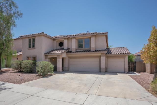 3223 W Lucia Drive, Phoenix, AZ 85083 (MLS #5802779) :: Occasio Realty