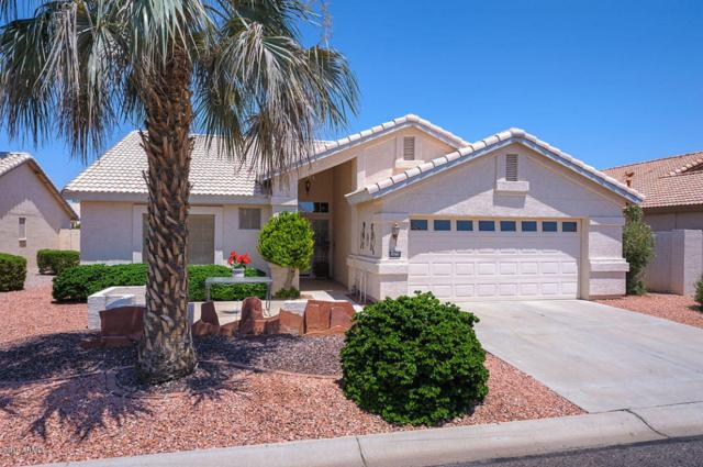 14778 W Merrell Street W, Goodyear, AZ 85395 (MLS #5802800) :: Kortright Group - West USA Realty