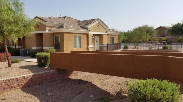 854 S San Marcos Drive C6, Apache Junction, AZ 85120 (MLS #5802835) :: Yost Realty Group at RE/MAX Casa Grande