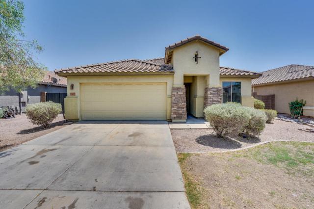 35407 N Shorthorn Trail, San Tan Valley, AZ 85143 (MLS #5802918) :: Yost Realty Group at RE/MAX Casa Grande