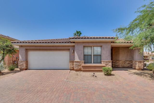 13613 W Cypress Street, Goodyear, AZ 85395 (MLS #5803044) :: Occasio Realty