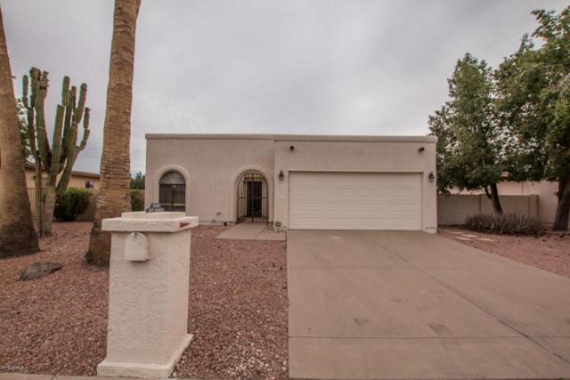 26441 S Saddletree Drive, Sun Lakes, AZ 85248 (MLS #5803121) :: Gilbert Arizona Realty