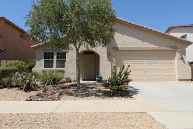 17380 W Lilac Street, Goodyear, AZ 85338 (MLS #5803129) :: Five Doors Network