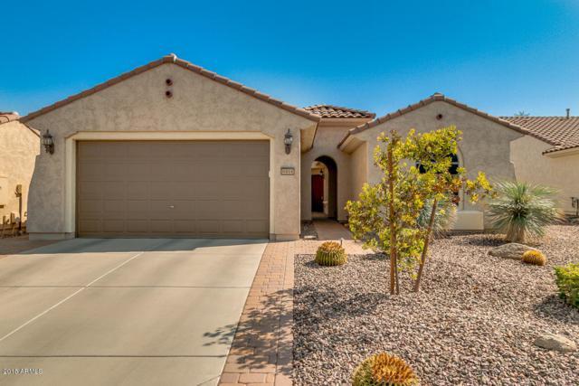 6414 W Sandpiper Way, Florence, AZ 85132 (MLS #5803392) :: Occasio Realty