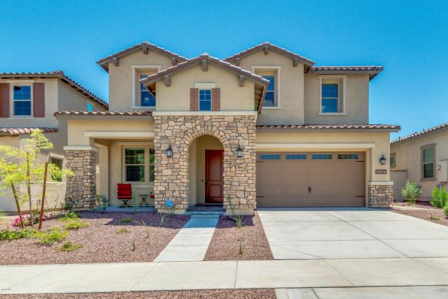 20497 W Valley View Drive, Buckeye, AZ 85396 (MLS #5803449) :: The Daniel Montez Real Estate Group